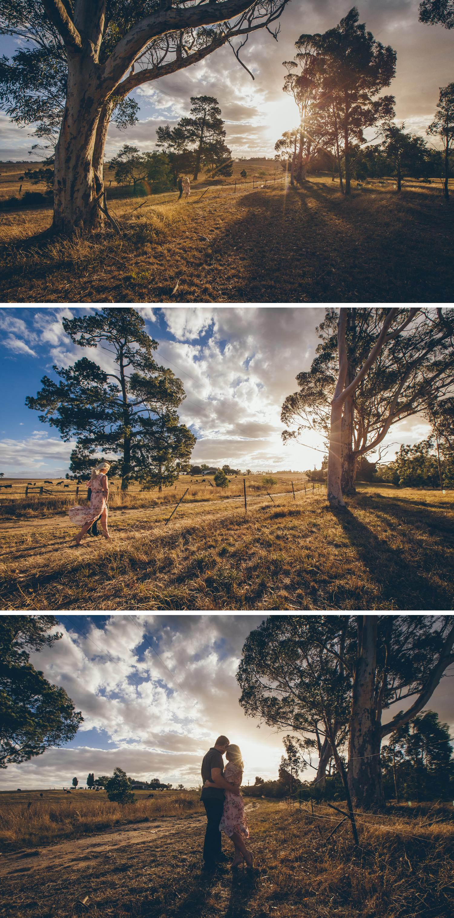 Couple Embracing Open Field Engagement Shoot, Wide Angle Shot of Bride and Groom Embracing in Long Grass, Beautiful Trees Photo by Danae Studios